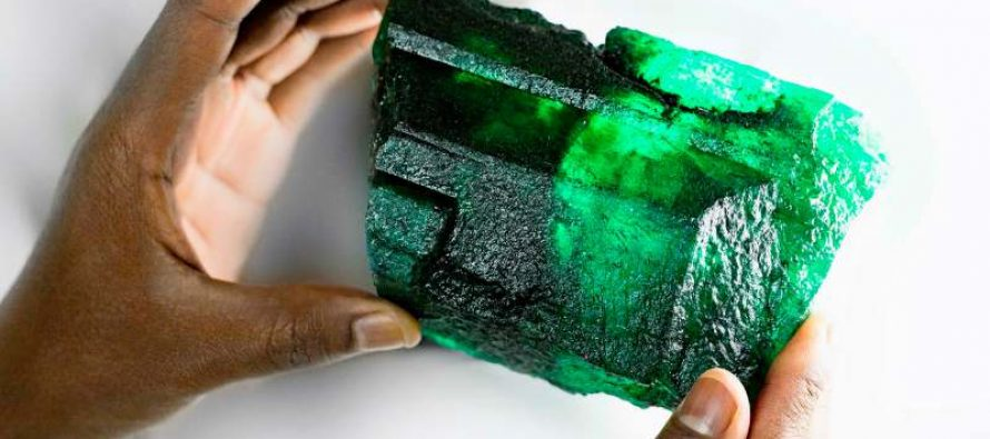 Diacolor acquires most-expensive Zambian emerald, unveils rare stone in New Delhi